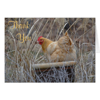 Chicken In A Pot Thank You Card