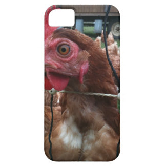 Chicken Is Watching You iPhone 5 Covers