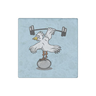 Chicken lifting weights stone magnet