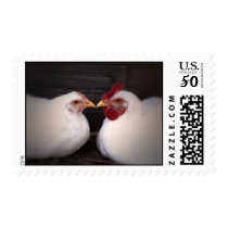 Chicken Love Postage