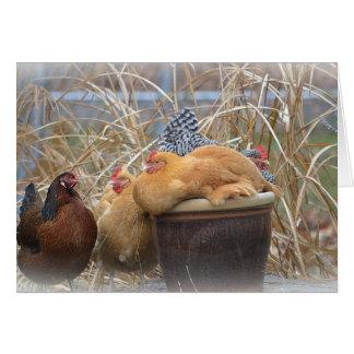 Chicken Note Card