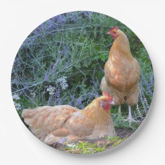 Chicken Paper Plate