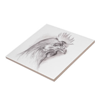 Chicken Portrait in Charcoal Ceramic Tile