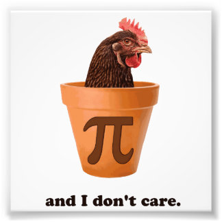 Chicken Pot Pi and I don t care Photo