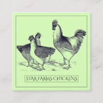 Chicken Poultry Farm Square Business Card