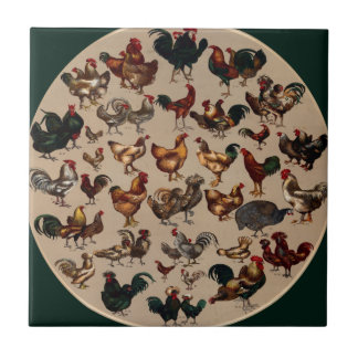 Chicken Poultry Of The World Ceramic Tile
