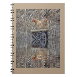 Chicken Reflections Notebook