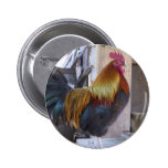 CHICKEN/rooster Pin