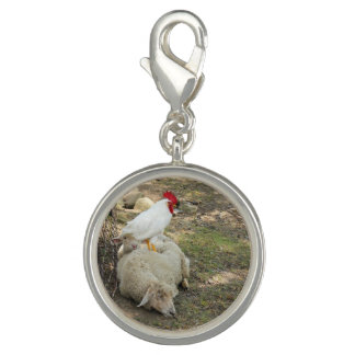 Chicken Sitting on a Sheep Charms