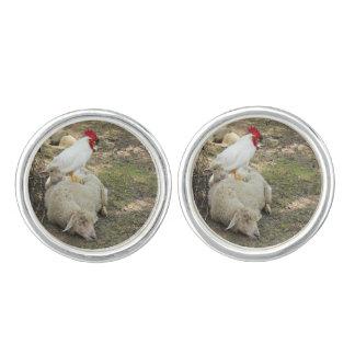 Chicken Sitting on a Sheep Cufflinks