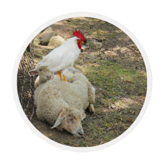 Chicken Sitting on a Sheep Edible Frosting Rounds