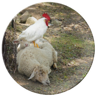 Chicken Sitting on a Sheep Porcelain Plates