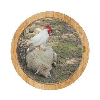 Chicken Sitting on a Sheep Round Cheeseboard