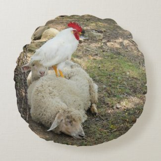 Chicken Sitting on a Sheep Round Pillow