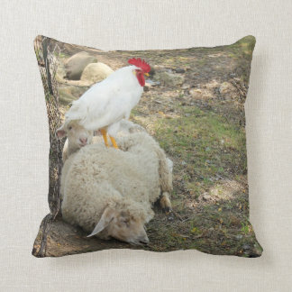 Chicken Sitting on a Sheep Throw Pillows