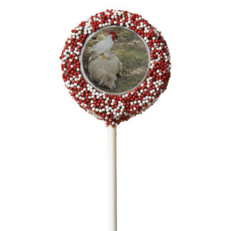 Chicken Sitting on a Sheep Chocolate Dipped Oreo Pop