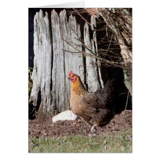 Chicken Strutting Her Stuff Card