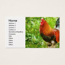 Chicken - The Rooster Business Card