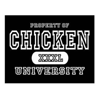 Chicken Univeristy Dark Postcard