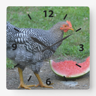 Chicken Watermelon Wall Clock