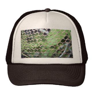 chicken wire hat
