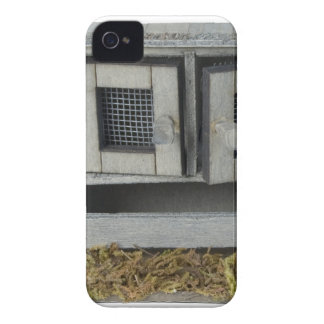 ChickenCoop031415.png iPhone 4 Covers