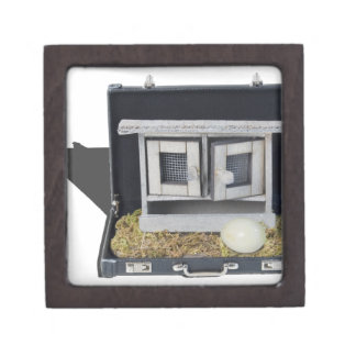 ChickenCoopBriefcase031415.png Gift Box