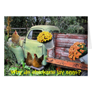 Chickens and old pick up truck card