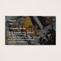 Chickens Animal Bird Business Card