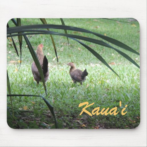 Chickens in Kauai Mousepads