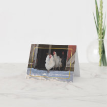 Chickens in the snow christmas card