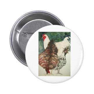 chickens pinback buttons