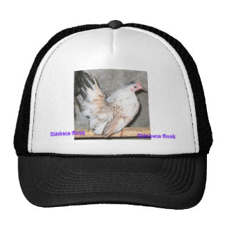 Chickens Rock Trucker Hat