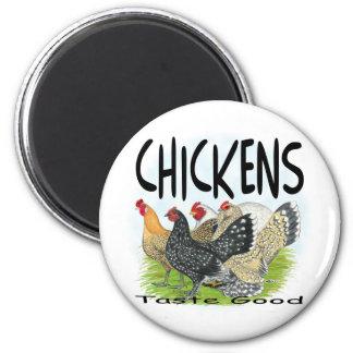 Chickens Taste Good! Fridge Magnet