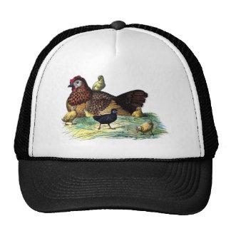 Chickens Vintage Animal Trucker Hat