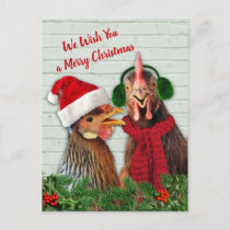 Chickens Wish You A Merry Christmas Holiday Postcard