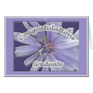 Chickory Congratulations Graduate Card