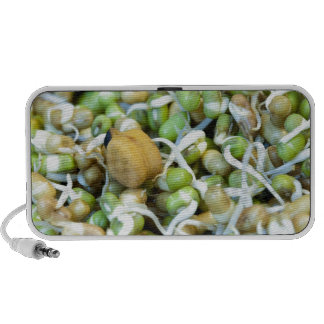 Chickpea and sprouts mp3 speakers