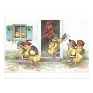Chicks at School and Rooster Teacher Postcard