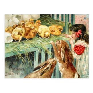 Chicks Bunnies Easter Scene Post Card Vintage