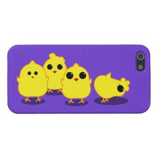 Chicks Case