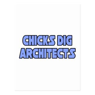 Chicks Dig Architects Postcard