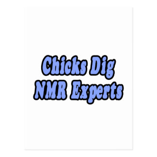 Chicks Dig NMR Experts Postcard