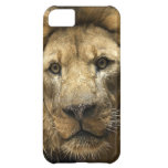Chicks Dig Scars Cover For iPhone 5C