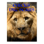 Chicks Dig Scars Post Card