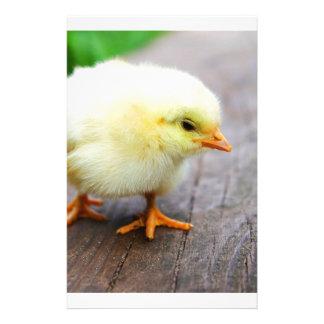 Chicks Images Stationery Design