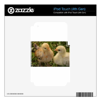 Chicks iPod Touch 4G Decal