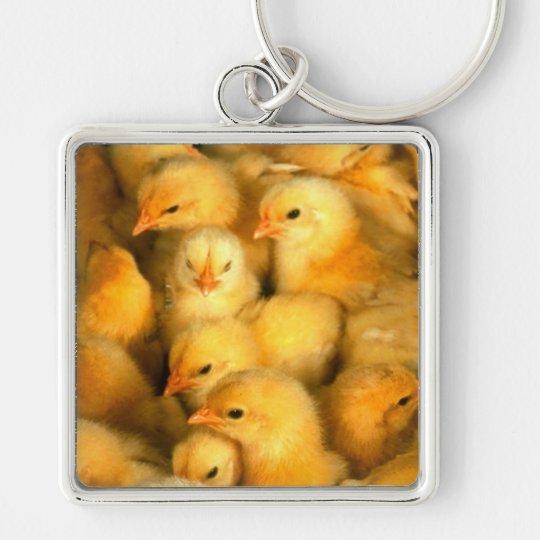 Chicks Keychain