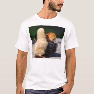 Chicks Man! T-Shirt