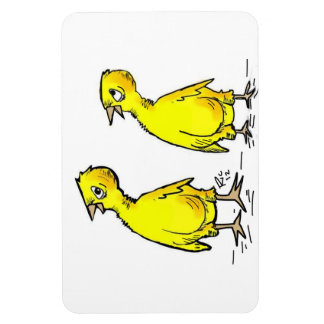 chicks on a magnet
